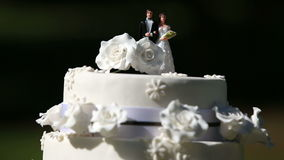 Pastel de bodas con los primeros de la torta almacen de video
