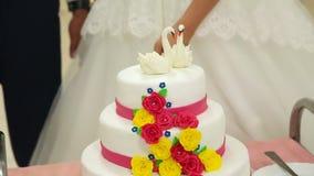 pastel de bodas del corte almacen de video
