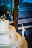 Pastel de bodas del pescador Imagen de archivo libre de regalías