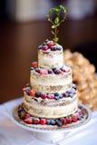 Pastel de bodas delicioso del chocolate adornado con las frutas y las bayas Fotos de archivo libres de regalías