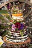 Pastel de bodas desnudo del ` del ` rústico Imágenes de archivo libres de regalías