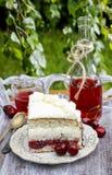 Pastel de capas de la cereza y del coco Imagen de archivo libre de regalías