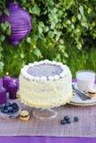 Pastel de capas del arándano y del coco Foto de archivo libre de regalías
