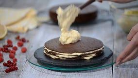 Pastel de capas Medovik de la miel del chocolate Confitero profesional que hace la torta deliciosa metrajes