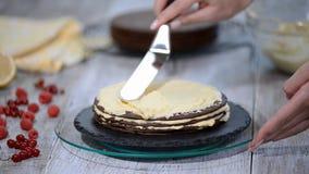Pastel de capas Medovik de la miel del chocolate Confitero profesional que hace la torta deliciosa almacen de video