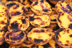Pastel de nata. Stock Photos