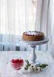 Pastel de queso adornado con la salsa de la cereza con las bayas Foto de archivo libre de regalías