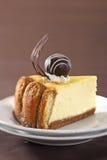 Pastel de queso cocido al horno de Tiramisu Imagen de archivo