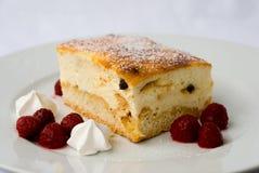 Pastel de queso con la frambuesa Fotos de archivo libres de regalías