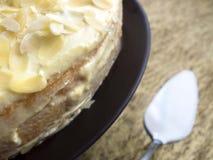 Pastel de queso con las nueces del almont Fotografía de archivo libre de regalías