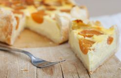 Pastel de queso de la cabaña con el albaricoque Imagenes de archivo