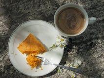 Pastel de queso de la calabaza Imagen de archivo libre de regalías