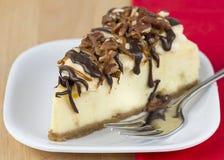 Pastel de queso de la tortuga imagen de archivo