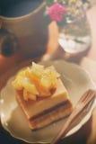 Pastel de queso del mango Imagen de archivo libre de regalías