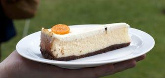 Pastel de queso del queso de cabra Imagenes de archivo