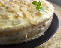 Pastel de queso hecho en casa Imagenes de archivo