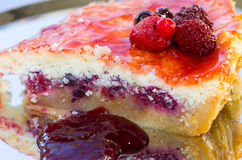 Pastel de queso hecho en casa de la fresa con las frutas rojas Fotografía de archivo libre de regalías