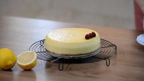 Pastel de queso hecho en casa de Nueva York Adorne la frambuesa de Nueva York del pastel de queso almacen de video