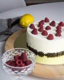 Pastel de queso de la frambuesa fotografía de archivo libre de regalías