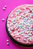 Pastel de queso sabroso con las melcochas para la fiesta de cumpleaños en fondo rosado Foto de archivo libre de regalías