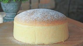 Pastel de queso suave Foto de archivo