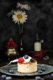 Pastel de queso ucraniano con las bayas y la crema, aún vida Imagenes de archivo