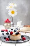 Pastel de queso ucraniano con las bayas y la crema, aún vida Imágenes de archivo libres de regalías