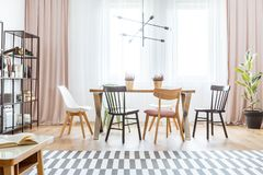 Pastel dining room interior. Metal lamp above wooden table with chairs in pastel dining room interior with patterned carpet and ficus stock images