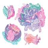 Pastel Doodle Romantic Vector Flowers Royalty Free Stock Photos