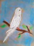 Pastel drawing of a white parrot - made by child Royalty Free Stock Image