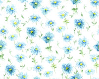 Pastel drawn chamomile seamless pattern. Pastel drawn chamomile, seamless pattern Stock Images