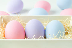 Pastel easter eggs at wooden basket Royalty Free Stock Photography