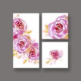 Pastel elegant rosy floral on white background. Stock Images