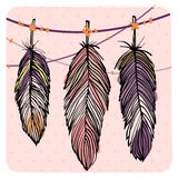 Pastel feather set Stock Image