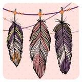 Pastel feather set. Pastel colored feather set, vector decoration illustration background Stock Image