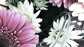 Pastel Floral Display, Youtube Channel Art Banner. 2560 x 1440 , Close up Floral Subject stock images