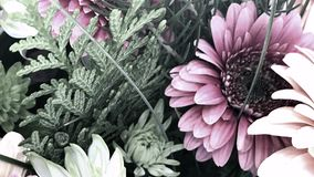 Pastel Floral Display, Youtube Channel Art Banner. 2560 x 1440 , Close up Floral Subject stock image
