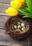 Pastel flowers, colorful Easter eggs in basket Stock Images