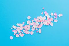 Pastel flowers petals arrangement on blue background. Flat lay, Top view. Valentines day royalty free stock photography