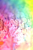 Pastel Ganesha Stock Photos