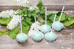 Pastel green cake pops in spring setting Stock Image
