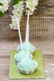 Pastel green cake pops in spring setting Royalty Free Stock Image