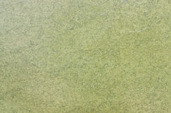 Pastel green paper texture Royalty Free Stock Photos