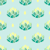 Pastel green and yellow succulents on pastel blue background.   Stock Photo