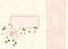 Pastel lace and floral frame Royalty Free Stock Image