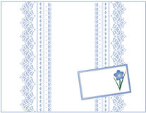 Free Pastel Lace, Forget Me Not Gift Box With Card Stock Images - 6407804