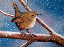 Pastel Painting of Wren in Winter. This is an oil pastel painting of a small Wren perched on a snow-covered branch in winter time, with snow falling gently Stock Photo
