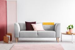Pastel pink and burgundy pillows on grey sofa in elegant scandinavian living room with red, pink and white wall with copy space.  royalty free stock images
