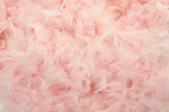 Pastel pink feathers from a boa Stock Photo