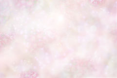 Pastel Pink Floral Background Royalty Free Stock Image